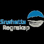 snøhetta regnskap logo